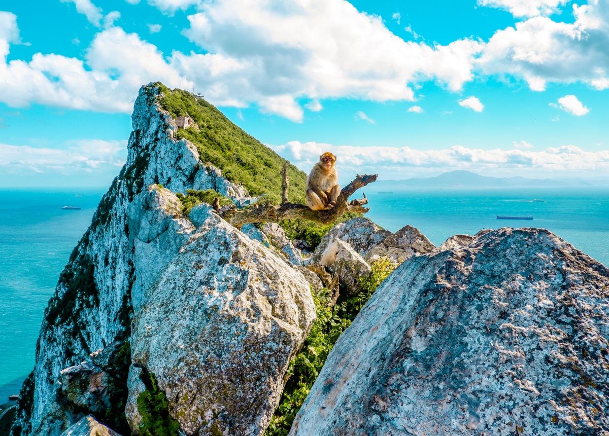 Gibraltar's rock