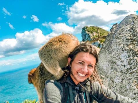 Monkey wants my bag!